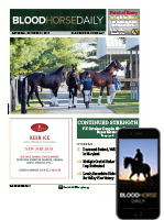 BloodHorse Daily