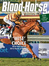 The Blood-Horse