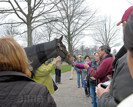 Rachel Alexandra Fan Day 1