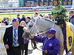 Afleet Again after the Breeders' Cup Marathon.