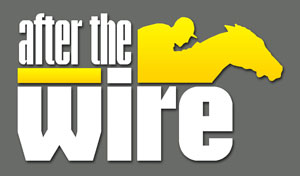 After the Wire Logo