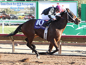 Az Ridge wins the 2012 Luke Kruytbosch Stakes.