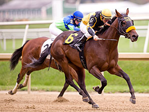Access to Charlie wins the 2011 Twixt Stakes.