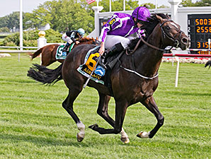 Adelaide wins the 2014 Secretariat.