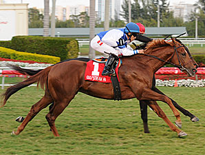 Adirondack Summer wins the 2011 Dania Beach.