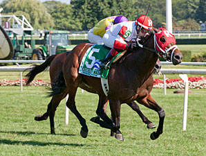 Admiral Kitten wins the 2013 Secretariat.