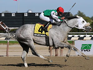 Afleet Again wins the 2010 Withers.