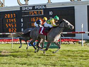 Afortable - Maiden win April 24, 2014.