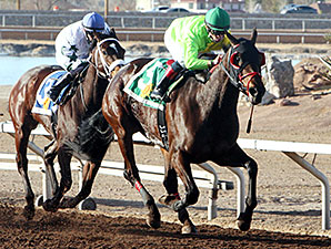 African Rose wins the 2014 El Diario Handicap.