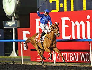 African Story wins the 2014 Dubai World Cup.