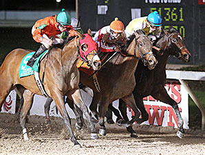 Afternoon Tango wins the 2015 LA Bred Premier Night Matron Stakes.