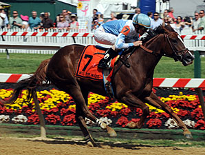 Agave Kiss wins the 2012 Miss Preakness.