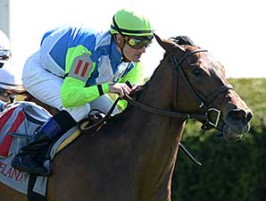 Ageless wins the 2014 Giant's Causeway.