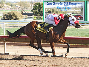 Agent Scully wins the 2013 Arizona Oaks.