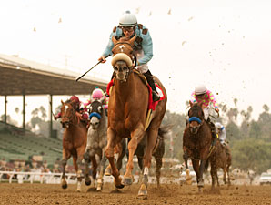 Aggie Engineer wins the 2011 San Pasqual.