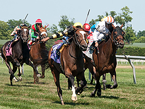 Aigue Marine wins the 2014 Robert G. Dick Memorial Stakes.