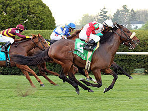 Air Support wins the 2011 Transylvania Stakes.