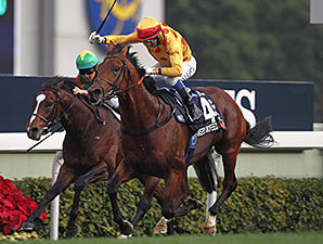 Akeed Mofeed wins the Hong Kong  Cup.