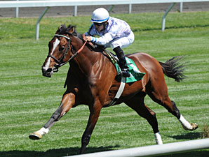 Al Khali in his 4/7/2012 Keeneland win.