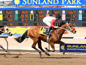 Alarm Bell wins the 2012 Copper Top Futurity Trial - Colts & Geldings