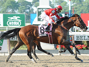 Alcomo wins the 2010 Brooklyn.