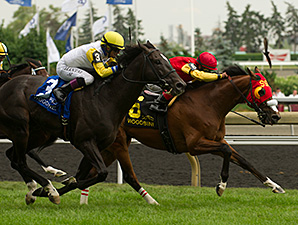 Aldous Snow wins the Singspiel Stakes.