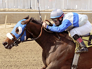 All Giving wins the 2010 Primonetta Stakes.