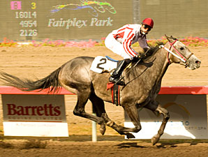 Eduardo Gamez' All Saint and jockey Felipe Valdez win the $50,000 Jim Kostoff Stakes Friday, September 11, 2009 at Fairplex Park, Pomona, CA