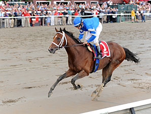Alpha wins the 2012 Jim Dandy.