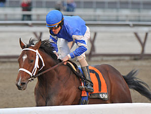 Alpha wins the 2012 Withers.