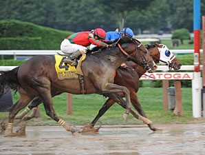 Alpha wins the 2013 Woodward Stakes.