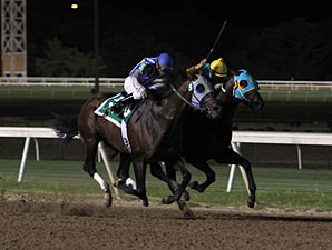 Alternation wins the 2012 Governor's Cup.