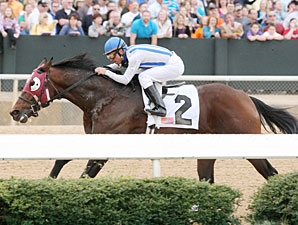 Alternation wins the 2012 Razorback Handicap.