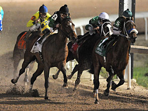 Amanecer de Oro wins the 2011 LA Champions Sprint.