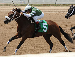 Amanecer de Oro wins the 2012 Louisiana Cup Sprint.