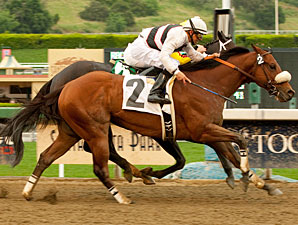 Amazombie wins the 2011 Potrero Stakes.