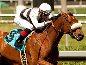 Amazombie wins the 2011 Tiznow Stakes.