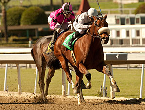 Amazombie wins the 2011 Ancient Title.
