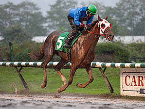 Ambleside Park wins the Fantasy Stakes.