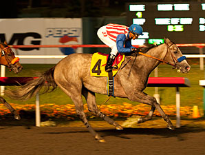 American Lady wins the 2012 Reminiscing Stakes.