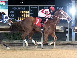 Amherst Street wins the 2013 West Virginia Futurity.
