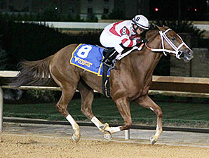 Amherst Street wins the 2013 West Virginia Vincent Moscarelli Memorial Breeders' Classic Stakes.