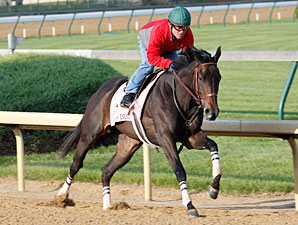 Amie's Dini - Churchill Downs, April 22, 2012.