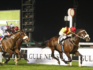 Anaerboio wins the 2014 Al Fahidi Fort.