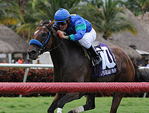 Angelica Zapata wins the 2014 Soaring Softly Stakes.