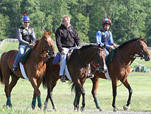Animal Kingdom at Fair Hill, 05/12/11.