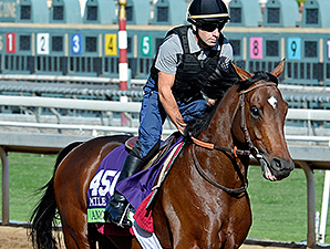 Anodin preps for the Breeders' Cup.