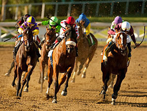 Anthony's Cross wins the 2011 Robert B. Lewis.
