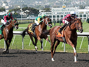 Anytime Magic wins the 2012 Lost in the Fog Stakes.