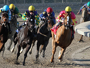 Applauding Allowance Win, Fair Grounds, December 2, 2011.